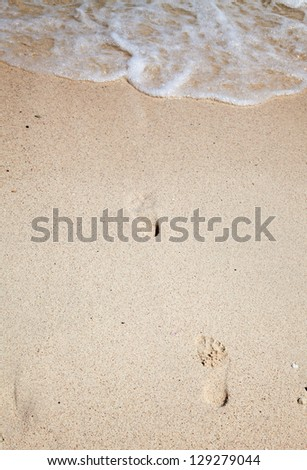 Footsteps on the sand of the beach - stock photo