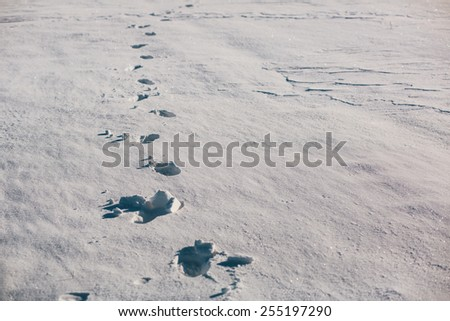 Footsteps on the snow field - stock photo