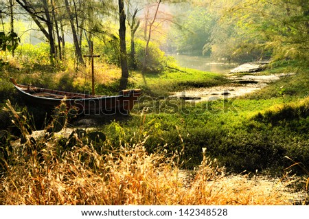Forest and boat at morning - stock photo