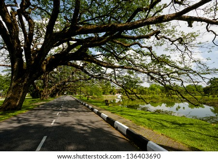 Forest and lake landscape park at Perak,Malaysia. - stock photo