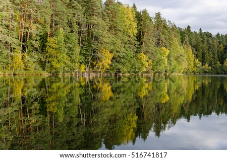 Forest and lake, reflection of the trees in the water.