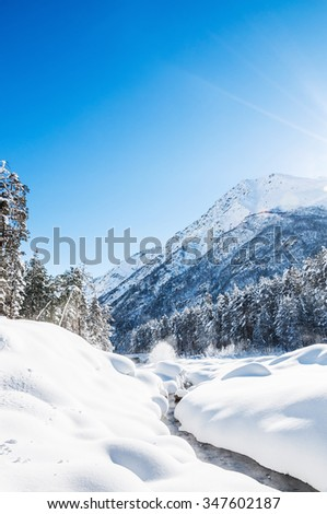 Forest and mountain river at sunny day. Beautiful winter landscape.