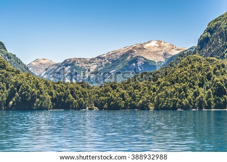 Forest and mountains landscape