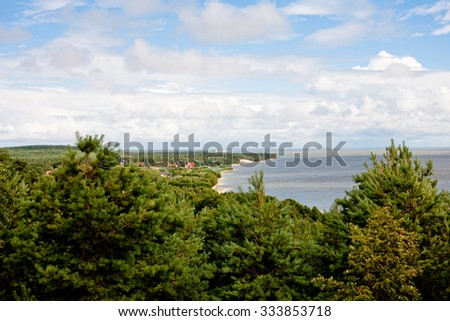 Forest and panorama of bay in summer day