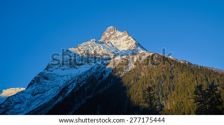 Forest and rocks in the snow, on a background of blue sky