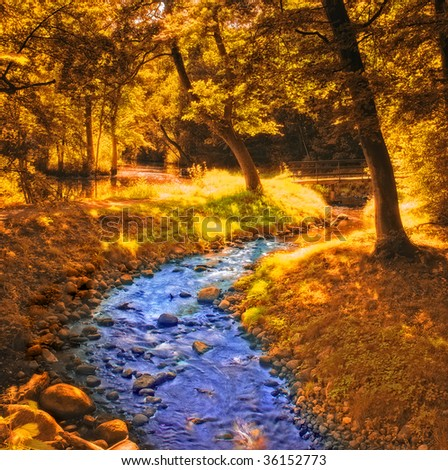 Forest and small river in early forest - stock photo