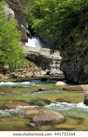 Forest and waterfall along the alpine river Arazas in the Pyrenees.