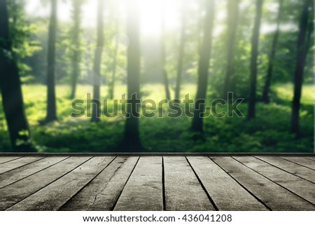 Forest and wooden planks. Beauty nature background - stock photo