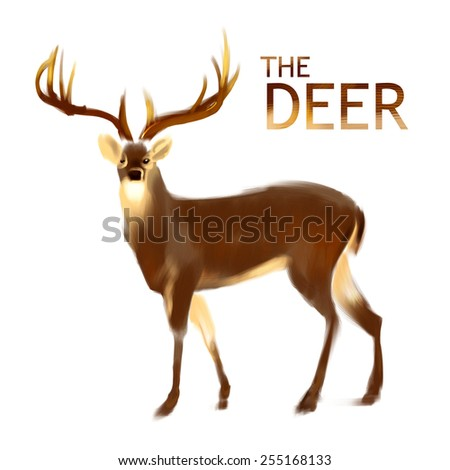 FOREST ANIMAL, wild DEER with horns hand brush illustration