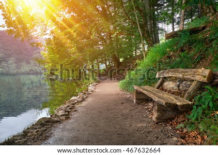 Forest Bench Near the Lake in Plitvice, Croatia National Park with sun rays.