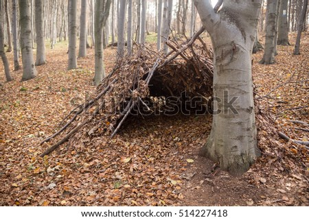 forest bivouac, Matra Mountains, Hungary