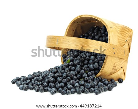 Forest blueberries in basket on a white background - stock photo