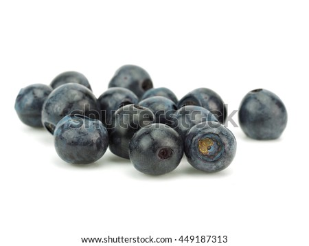 Forest blueberries on a white background