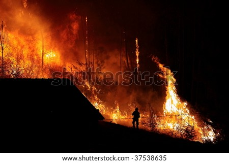 Forest burns close to houses. August 2009 - stock photo
