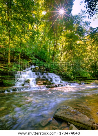 Forest creek and waterfall - stock photo