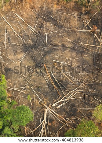 forest destruction with rainbow in thailand form Aerial view - stock photo