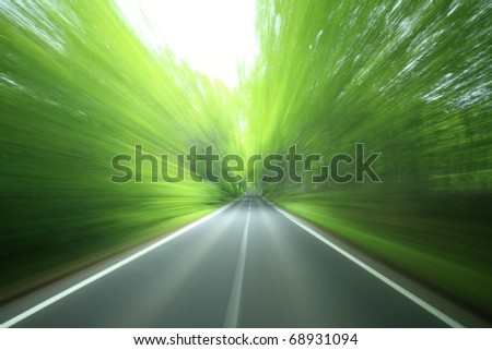 forest drive - stock photo