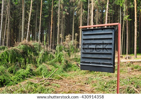Forest environment care protection against bark beetle - stock photo