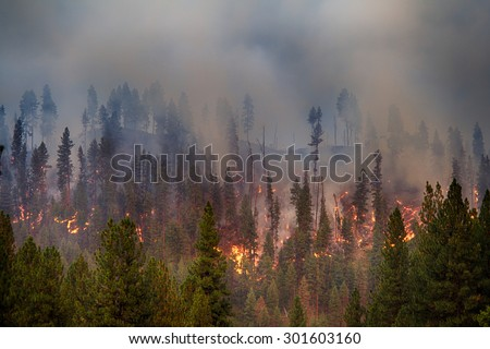 Forest fire in Garden Vally, ID - stock photo