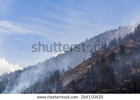 Forest Fire in Mountains of British Columbia, Canada - stock photo