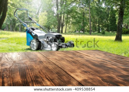 forest garden and wooden space  - stock photo