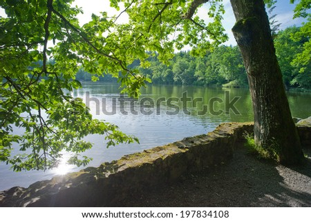 Forest Lake, Black Forest, Germany - stock photo