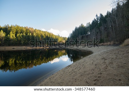Forest Lake, low tide - stock photo