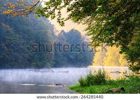 Forest lake morning in autumn ( Hungary-Lake Hamori ) - stock photo