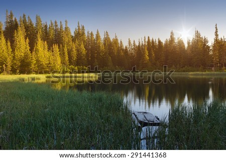 Forest landscape with a lake. Sunny morning in the mountains - stock photo