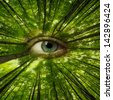 forest looking on us - ecology concept - stock photo