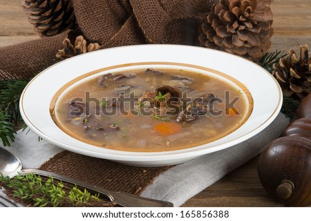 forest mushroom soup - stock photo
