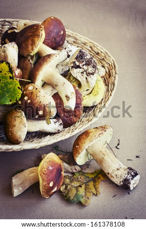 Forest mushrooms in the basket/ Background with the porcini mushrooms - stock photo