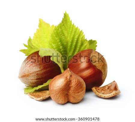 Forest nuts hazelnuts isolated on white background. - stock photo