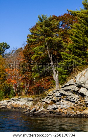Forest of Fall Colors Viewed from the Water - stock photo