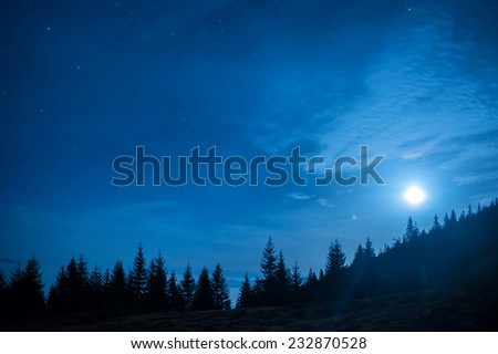 Forest of pine trees under moon and blue dark night sky with many stars. Space background - stock photo