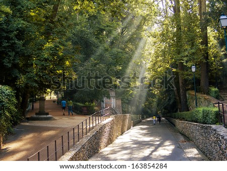 Forest of the Alhambra, Granada, Spain - stock photo