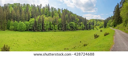 Forest panorama with path / road, meadow in the foreground - Wental valley at Swabian Alps
