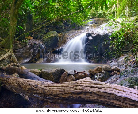 Forest photography background. Beautiful waterfall stream landscape - stock photo