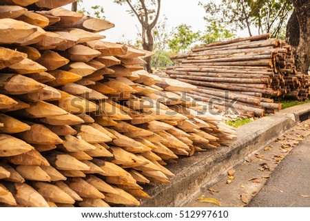 Freshly harvested scots pine pinus sylvestris stock photo for Pine tree timber