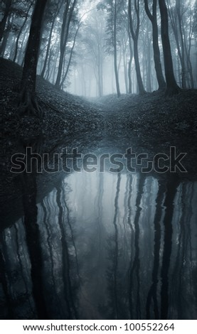 forest reflecting in a lake - stock photo
