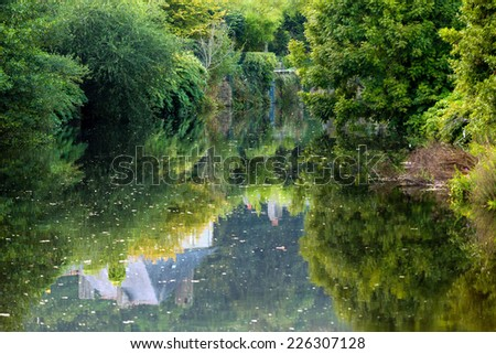 Forest reflecting on river in Quimperle city, Brittany, France - stock photo
