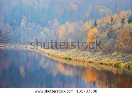 Forest river in fog. Sigulda, Gauja - stock photo