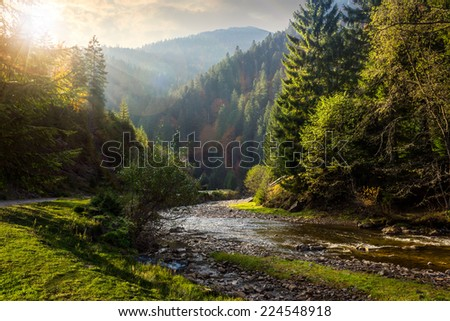 forest river with stones among the mountains in sunlight - stock photo