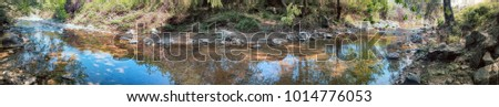 Forest rivulet in late summer with clear water. Summer low-water period, summer steady low water level, river bend, end of summer, sun spots, panorama of river