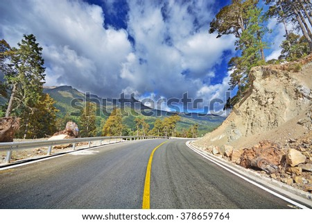 Forest road at west of chinese  - stock photo