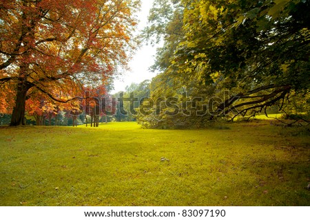 Forest Road in the autumn. Autumn Landscape. Autumn park. - stock photo