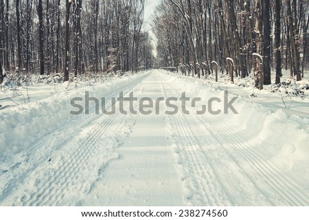 Forest road in winter - stock photo
