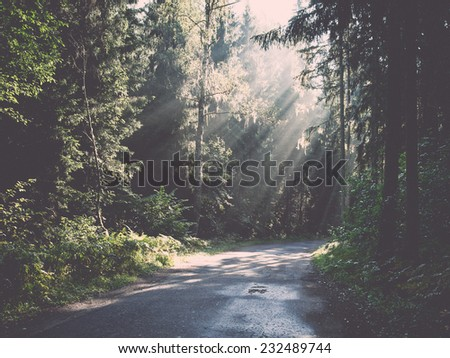 forest road with sun rays in the morning in the countryside. Vintage photography effect. - stock photo
