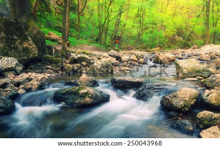 Forest stream / Beautiful motion blurred water stream landscape in a green bakony forest in Hungary - stock photo