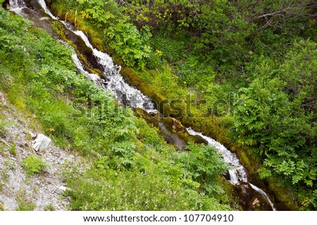 Forest stream in mountains running over mossy rocks - stock photo